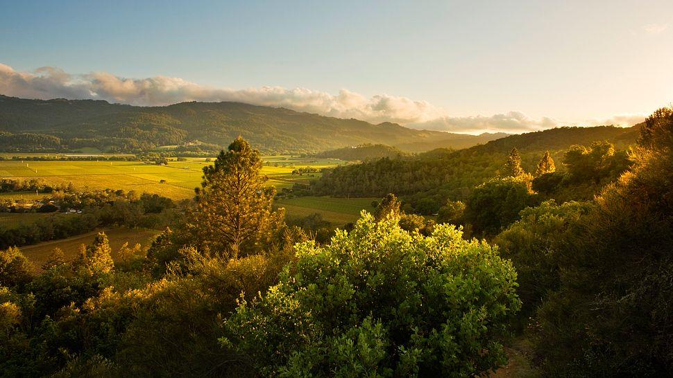 Calistoga Ranch En Napa Valley: Un Destino Increíble Para Que Recargues Tu Energía Y Salgas Totalmente Renovado