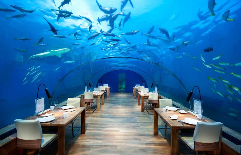 Los 12 restaurantes MÁS EXTRAÑOS del mundo que debes visitar