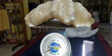 Pescador de Filipinas encuentra gigantesca perla.
