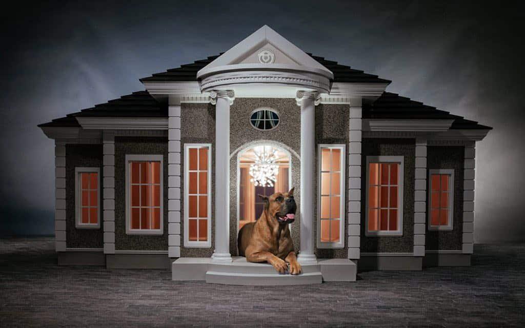 ¡La mascota de un mega rico se merece lo mejor! Lujosa casa para perros por $200.000