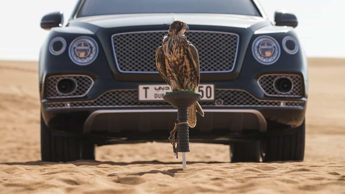 El nuevo Bentley Bentayga Falconry by Mulliner
