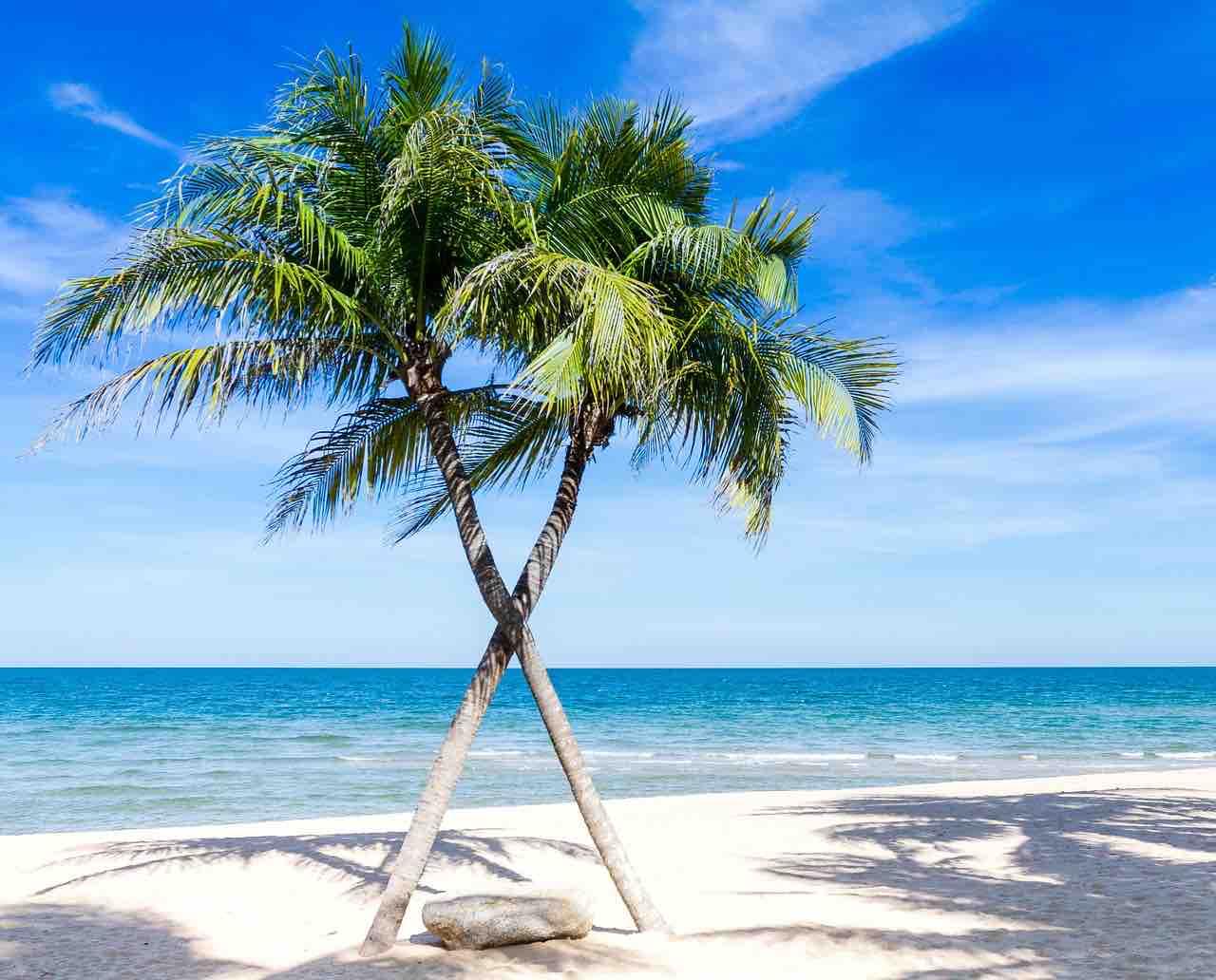 Las 10 mejores islas del caribe para visitar en el 2019