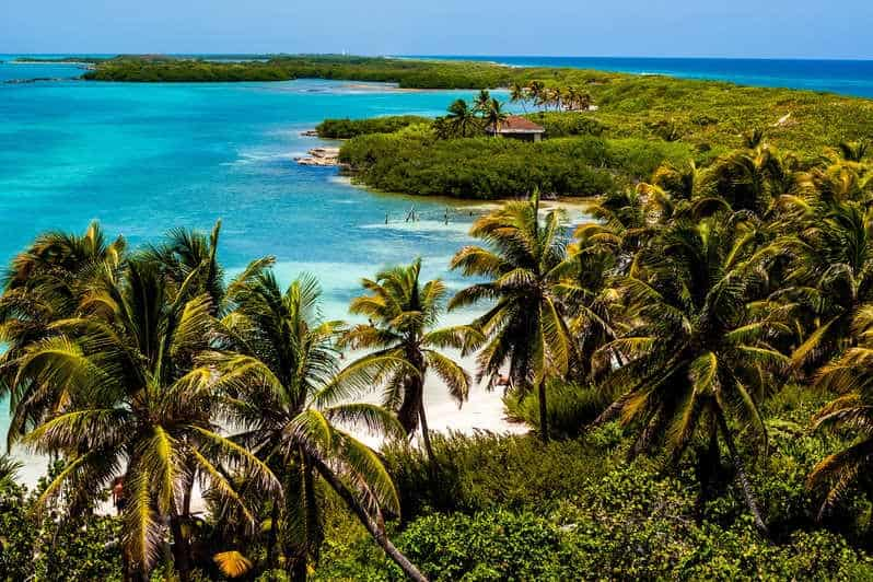 Islas mexicanas: Contoy