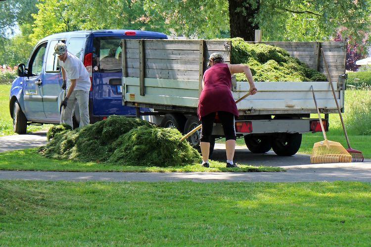 Negocios rentables: Landscaping y jardinería