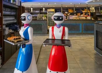 Camareros robot