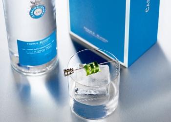 Potencia el sabor de Tequila Casa Dragones Blanco con estas sencillas recomendaciones.