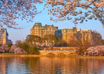 Mandarin Oriental, Washington DC da la bienvenida a los huéspedes