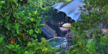 The Capella Ubud, un hotel construido entre árboles y escondido en la naturaleza virgen de Bali