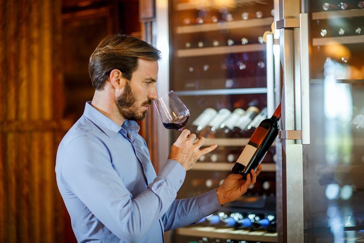 Neveras para vinos, todo lo que se necesita para disfrutar al máximo de la bebida
