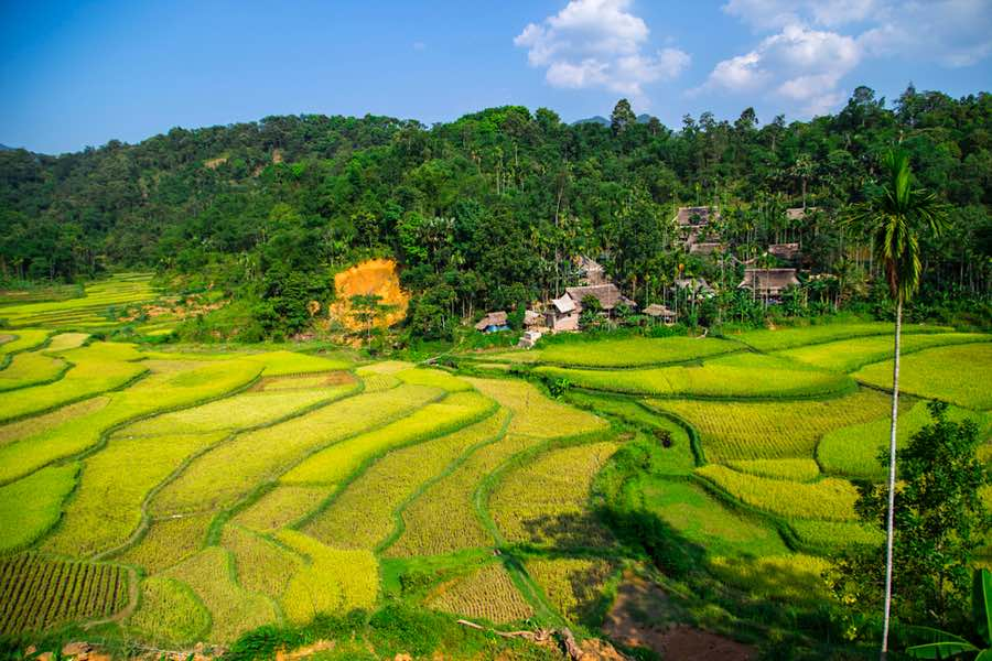 Valle de Muong Thanh
