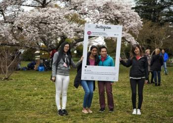 Festival de los cerezos en flor en el parque Queen Elizabeth, Vancouver, Canadá