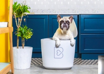 Barkyn Home, un innovador dispositivo basado en IA que aprende de los hábitos alimenticios de los perros para mejorar su salud.