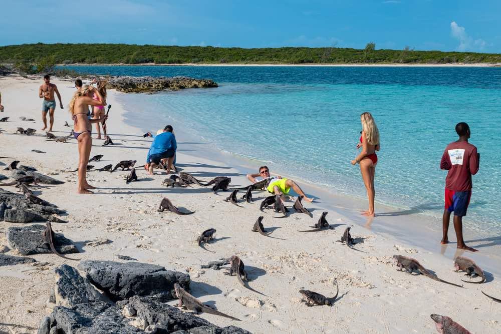 Turistas visitando la playa de las iguanas en Allen's Cay, Gran Exuma.